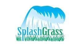 splash-grass-product-page