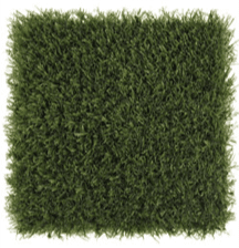 Playground-Grass-Extreme