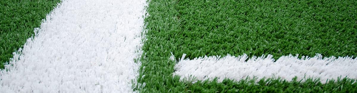 sportsgrass football